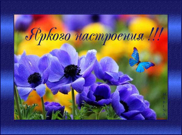 http://f3.mylove.ru/K_nw2g3cN2ZGvR1p.jpg