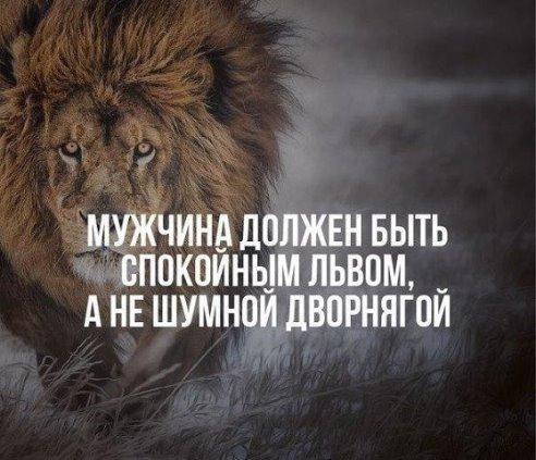 гаражей Рязани как мириться с недостатками льва наши