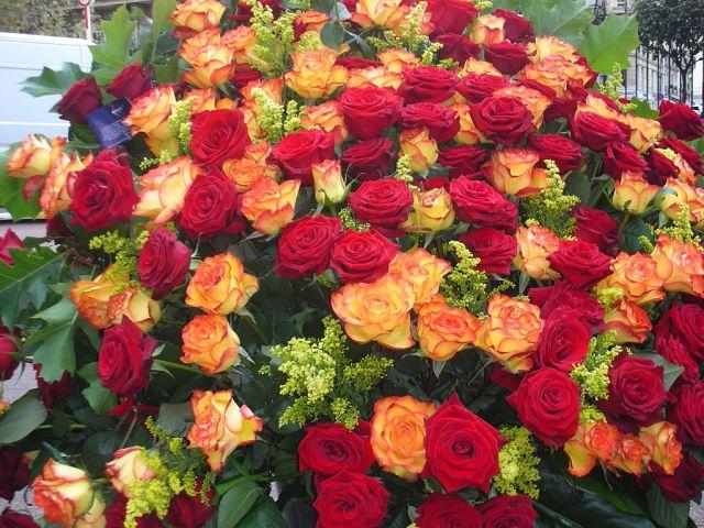 Открытки с огромным букетом цветов 720