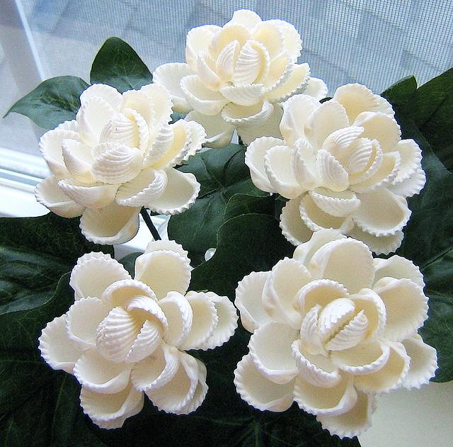 Цветок из ракушек своими руками фото