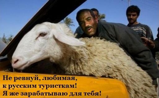 Ебет пастушку это