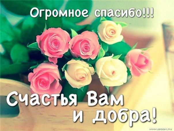 Большое спасибо за ваши поздравления