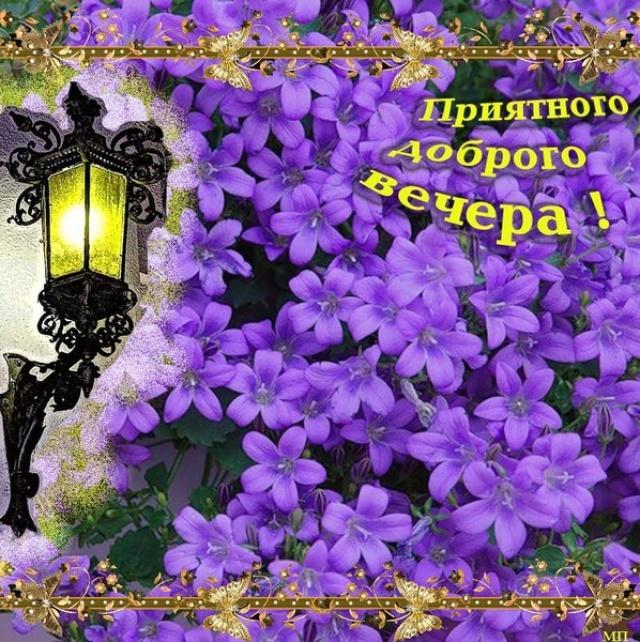 http://f3.mylove.ru/zocTfxdQaO.jpg