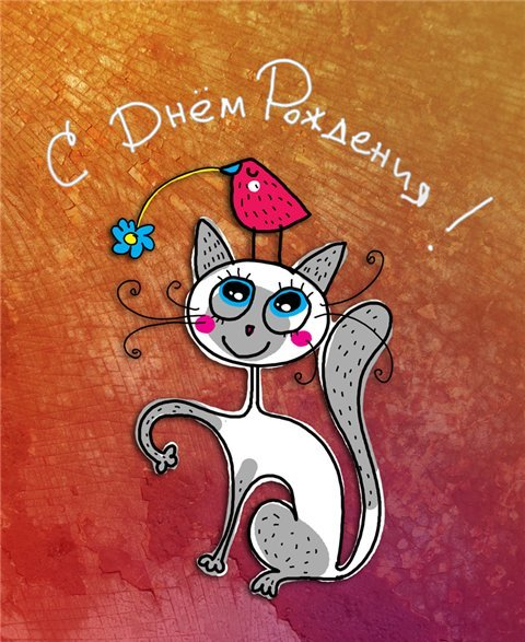 Картинки прикольные кошки с днем рождения