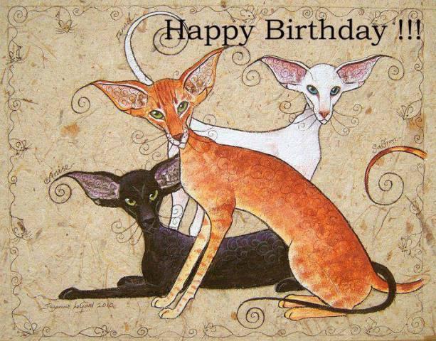 Открытки международным, открытки с ориентальными кошками