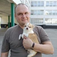 Андрей, 41 год, Лев, Харьков