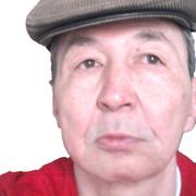 bulik, 61