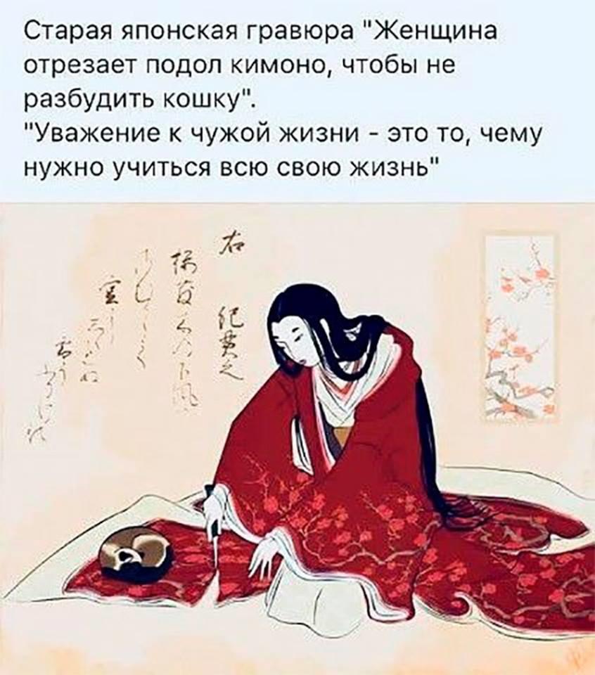 https://f3.mylove.ru/NDxqFMPlDe.png
