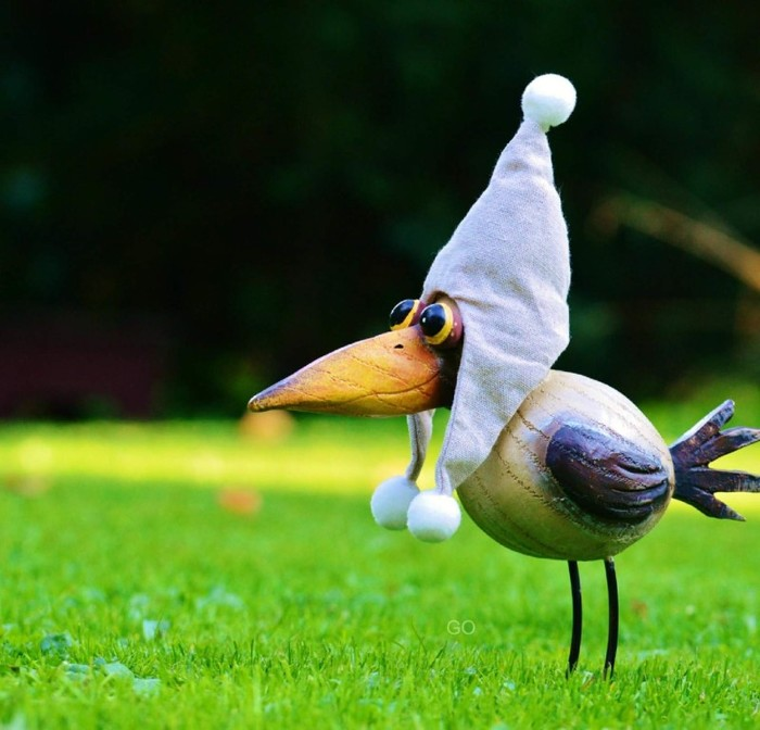 Птица картинка прикол, своими