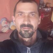 Fizesan Marius 41 Timisoara