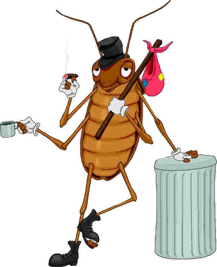 Тараканы в картинках смешные, новогоднее