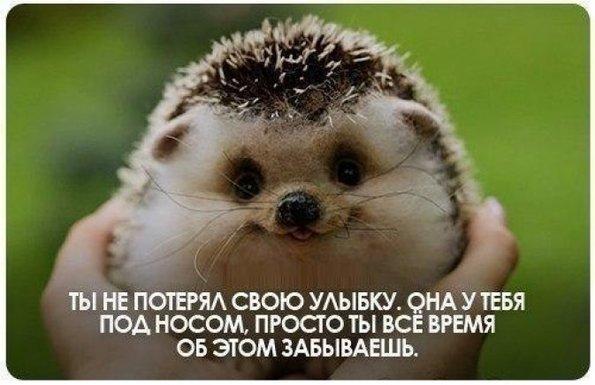 Андрей 37 лет саратов знакомства без фото 5