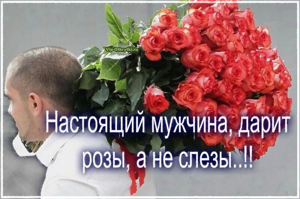 Картинки коты, картинки настоящий мужчина дарит розы а не слезы