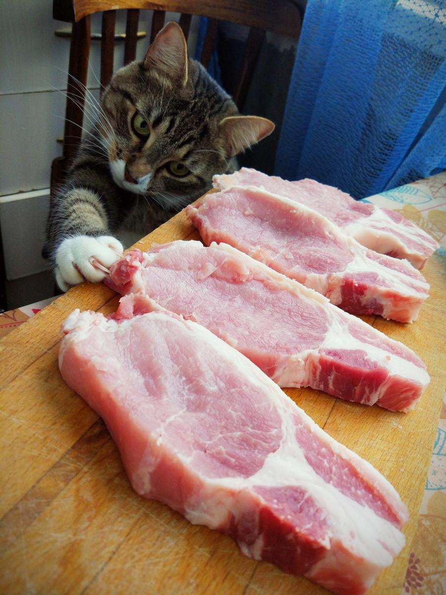 Веселые картинки мяса