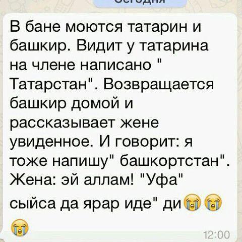 Прикольные картинки с надписями на татарском языке, делать открытки