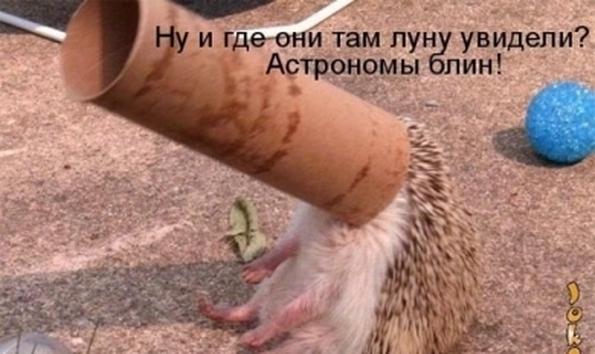 http://f3.mylove.ru/k_2Po82vM32RRRzUF.jpg