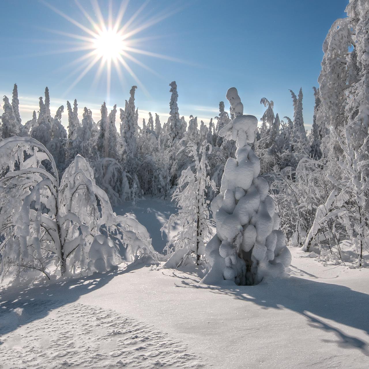 русская зима красивые картинки можете