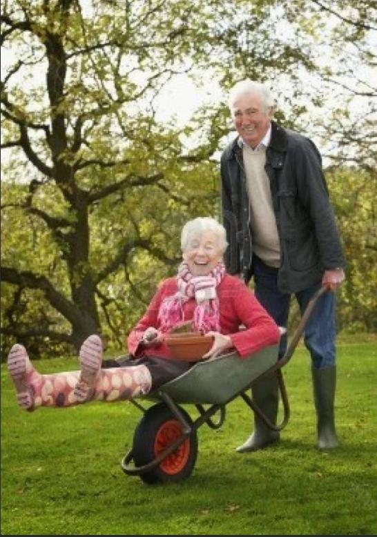 Бабка с дедом картинки прикольные, февраля поздравлениями для
