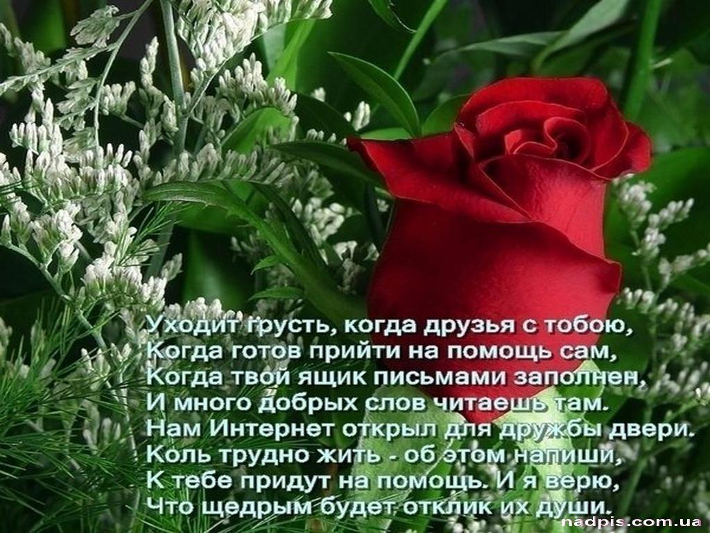 Красивые стихи с поздравлениями 23 февраля личного
