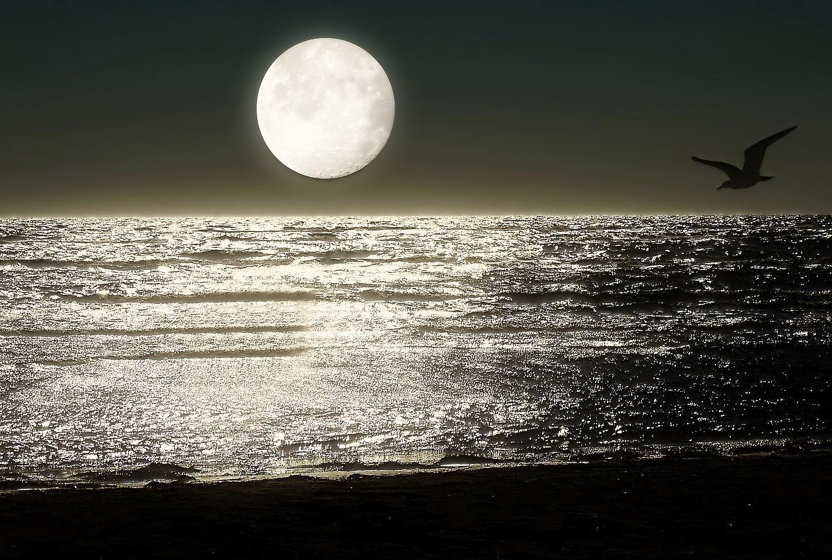 Красивые открытки море и луна