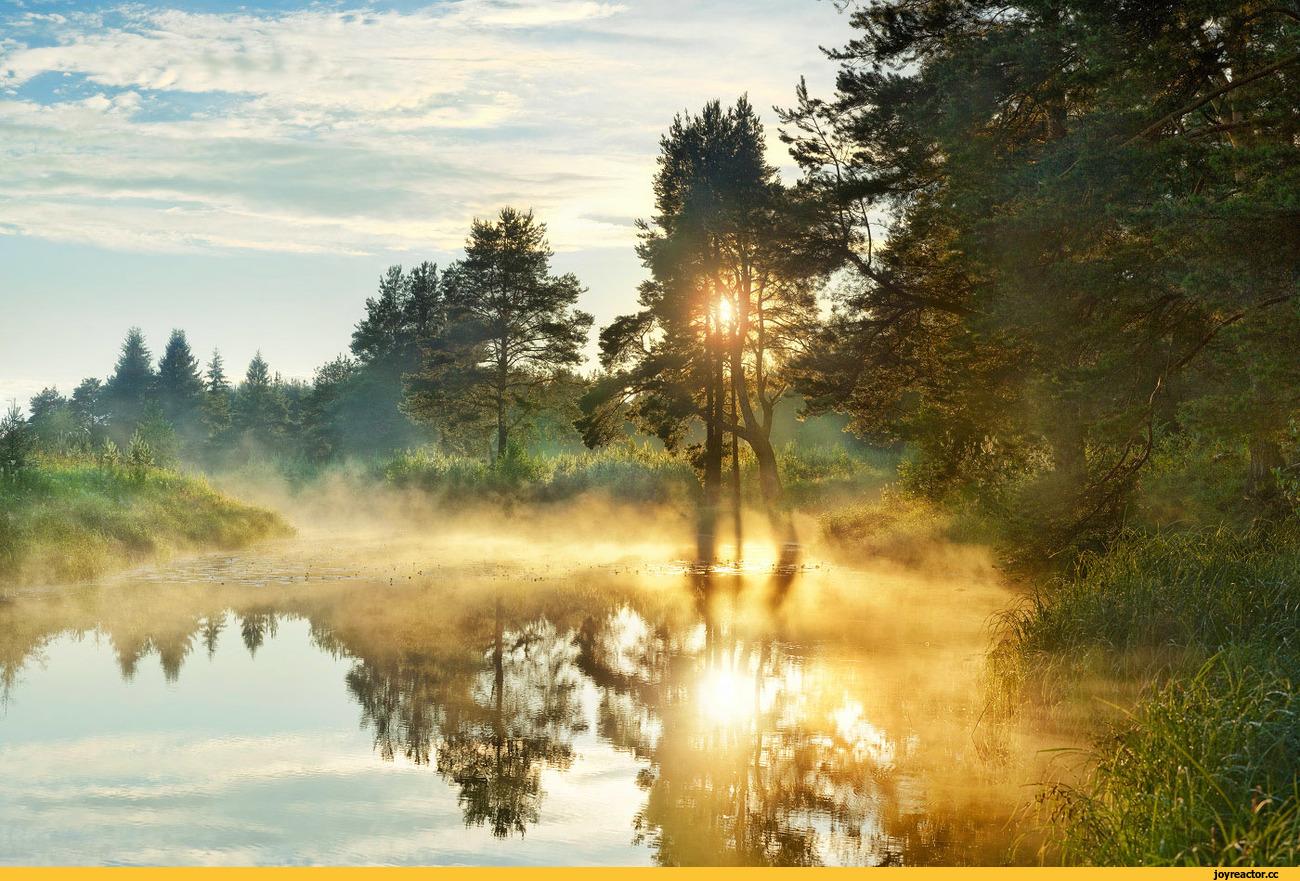 Картинки с добрым утром природа, пасхальная открытка